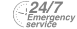 24/7 Emergency Service Pest Control in Catford, Hither Green, SE6. Call Now! 020 8166 9746